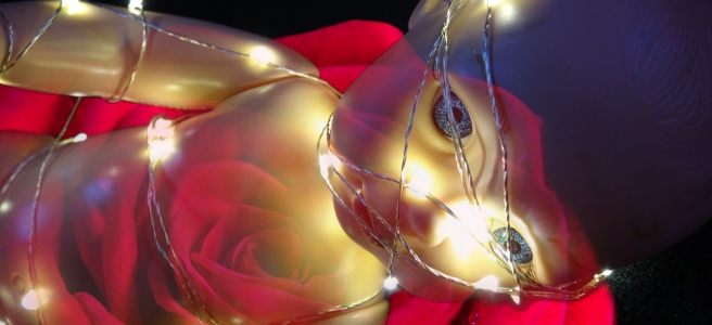 Double exposure image of a doll bound in fairy lights superimposed over a rose, with a black background.