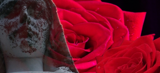 A memorial statue, weathered and spotted with lichens, fades into a backround of two roses against a field of black.